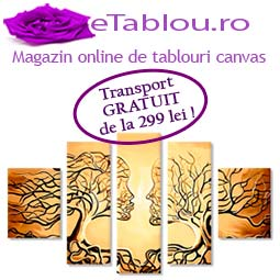 tablouri-canvas-etablou.ro